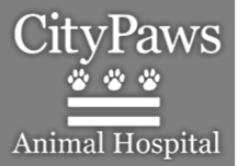 City Paws logo